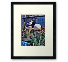 Seagull Habitat Framed Print