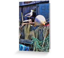 Seagull Habitat Greeting Card