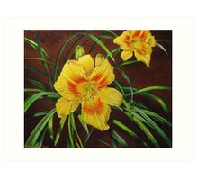 Yellow Daylily Art Print