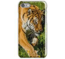 Right before the Kill iPhone Case/Skin