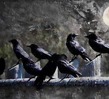 Blackbird Shadows and Moonlight Conversations by Diane Schuster