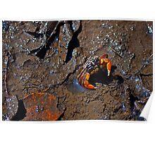 Mud Dweller Poster