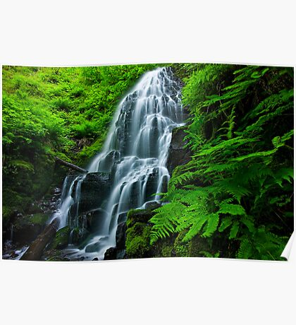 Fairy falls Poster