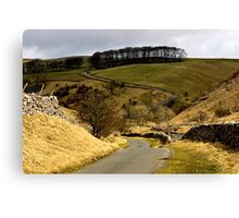 Coverdale Country Road Canvas Print
