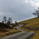 Hill Road by Trevor Kersley