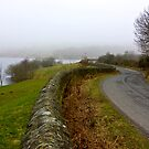 Mist around the Reservior by Trevor Kersley