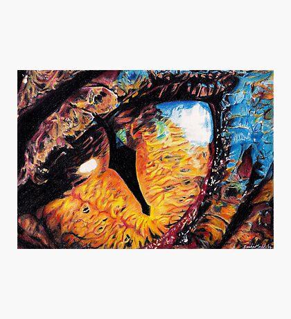 Smaug's Eye Photographic Print