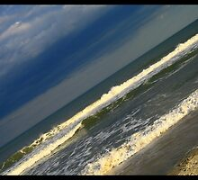 Cary Beach, NC by Rishabh Sharma