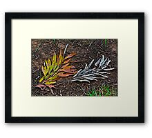 Multi-colored or monochrome? Framed Print