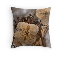 Antique Flowers in Spring Throw Pillow