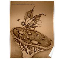 Double Hawkshead Butterfly Sepia Photo Poster