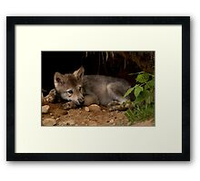 A Great Way to Cool Off Framed Print