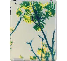 Beautiful nature iPad Case/Skin