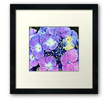 Summer Purple Flowers Framed Print