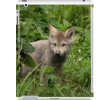 Youth in the Forest iPad Case/Skin