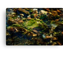 motion Canvas Print