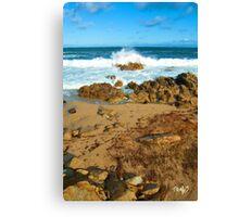 Ebb Tide Canvas Print
