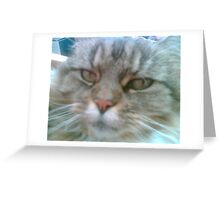 The look that speaks volumes Greeting Card