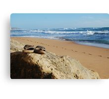 Desolate relaxing beach with flipflops Canvas Print
