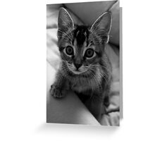 Zoe in black and white Greeting Card