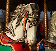 Ride the painted pony by pmarella