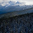 View from Whistler Mountain by Mark McClare