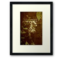 Garden Lion Framed Print