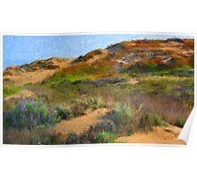 Sand Dune I - Seaside, CA Poster