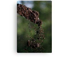 shovel in action Canvas Print