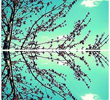 Branch Out. by Carolyn Walesa