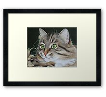 Kusia - lady with emerald eyes Framed Print