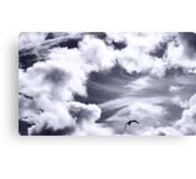 Fly, lonely angel Canvas Print