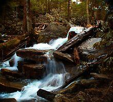 Hidden Falls  by William Herpel