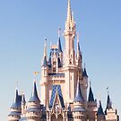 Cinderella Castle  by Atheum