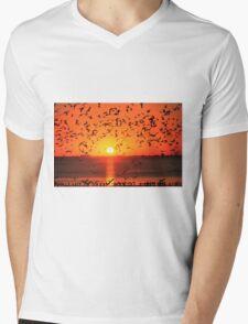 GULLS AT SUNSET T-Shirt