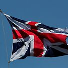 Flying the Flag !! by AnnDixon