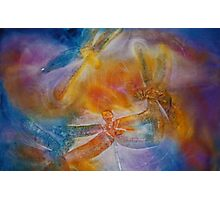 Watercolour: Dragonfly dance Photographic Print