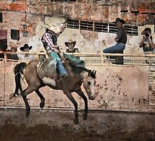 Ride 'Em Cowboy by Barbara Manis