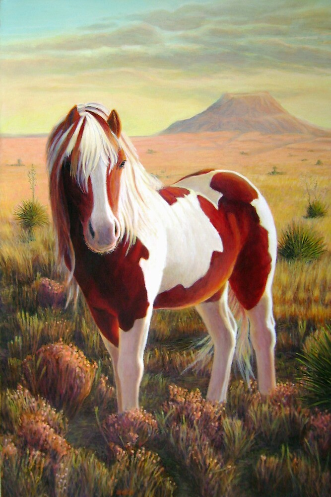 """Southwest Wild Paint Pony"" by Charles  Wallis"