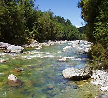 Upper Rough River - New Zealand South Island by Panteli Pyromallis
