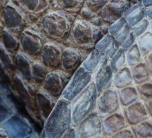 Gator Belly Hand Thigh Sticker