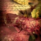 A Covenant of Peace by StacyLee
