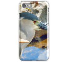 Blue Herron Posing  iPhone Case/Skin