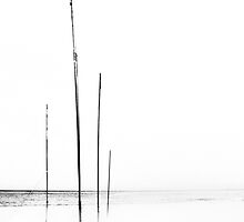 Flagpoles by LauraMcLean