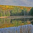 Fall season view and reflections of pond between Great Barrington and Stockbridge. by Bigart32