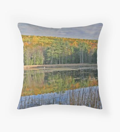 Fall season view and reflections of pond between Great Barrington and Stockbridge. Throw Pillow