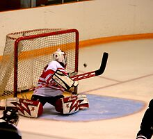 So... a goal or NO goal??? That is the question... by Larry Llewellyn