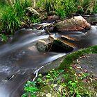 At the Falls by Kym Howard