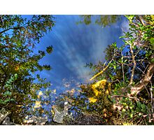 Everglades Reflections Photographic Print