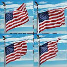 The Star Spangled Banner Waves by barnsis